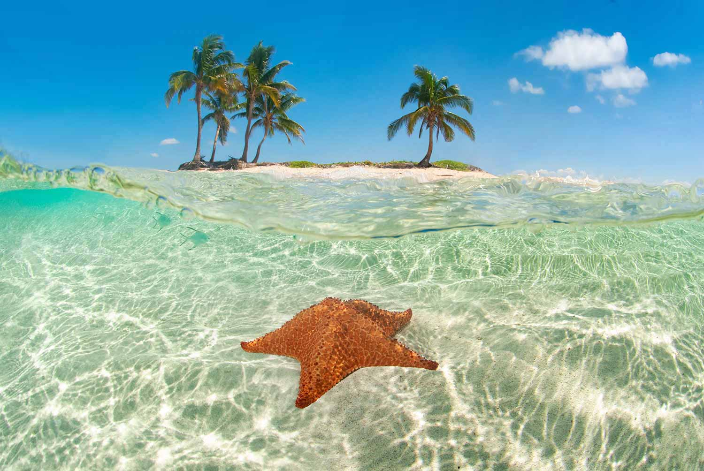 Cayos Cochinos: A Scuba Divers Dream Come True – Puerta Azul Roatan